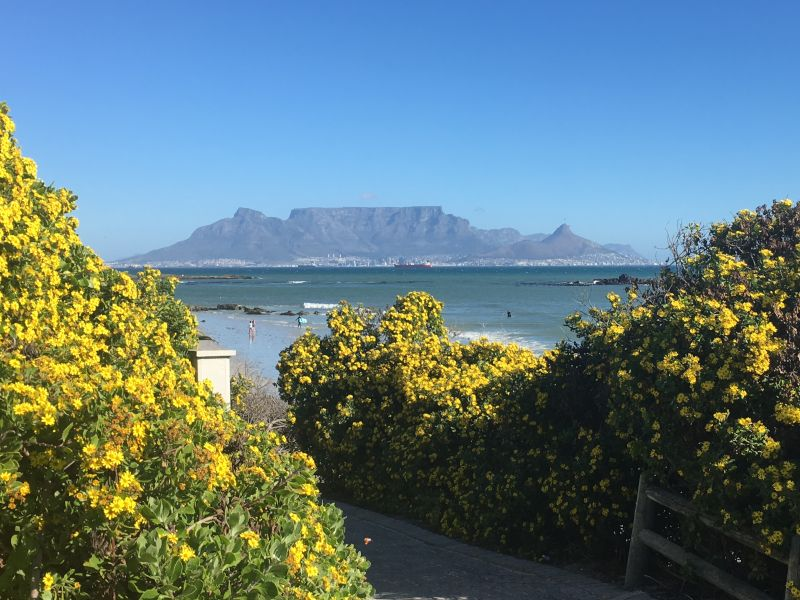Capetownboy